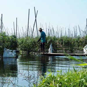villagers' floating gardens