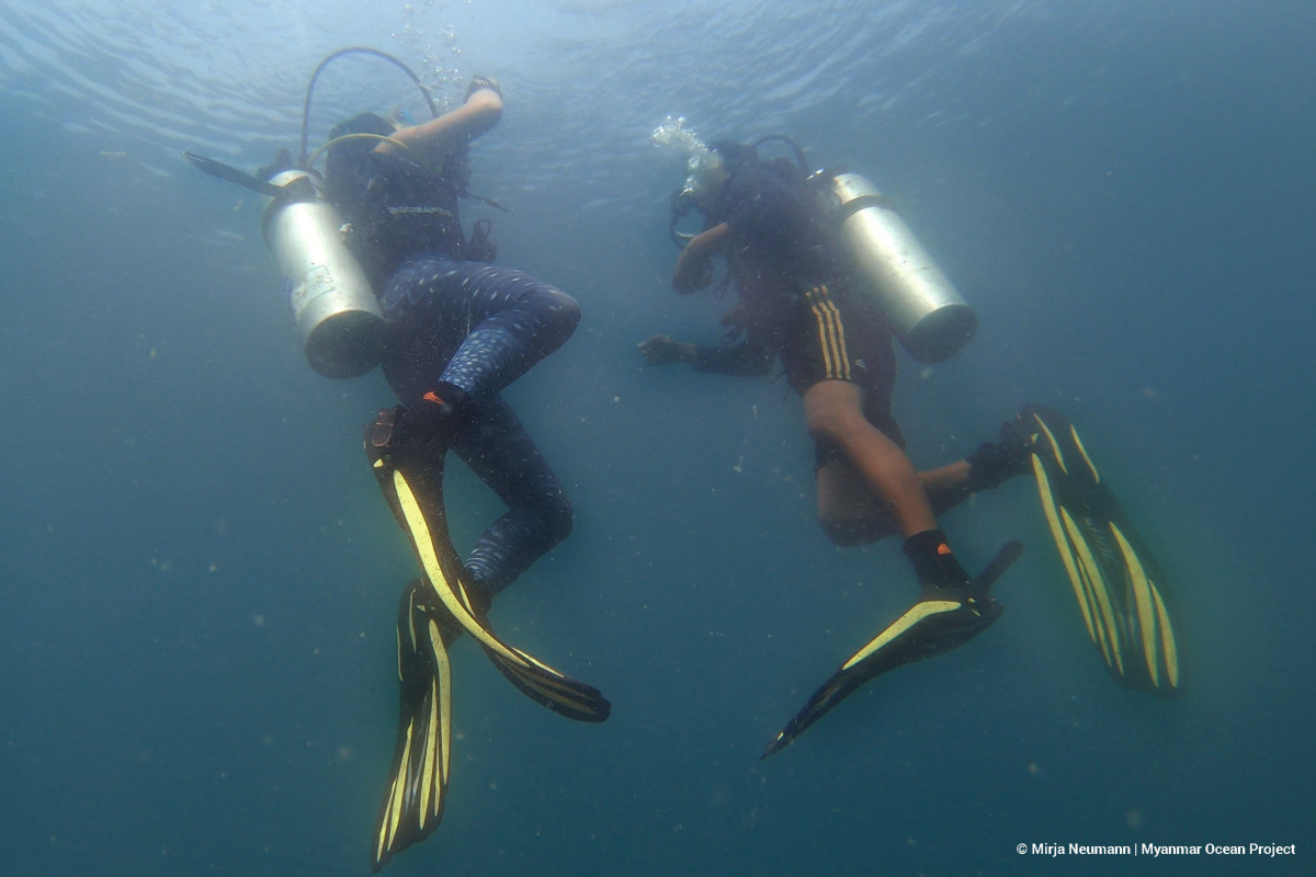 Scuba Diving at Lampi park